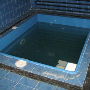 Чаша бассейна «Бриз» 1