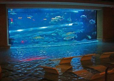 Устройства мультимедиа в бассейн